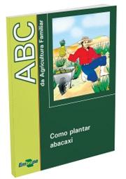ABC da Agricultura Familiar: Como plantar abacaxi