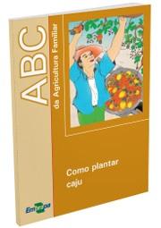 ABC da Agricultura Familiar: Como plantar caju