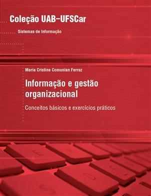 Informação e gestão organizacional: conceitos básicos e exercícios práticos