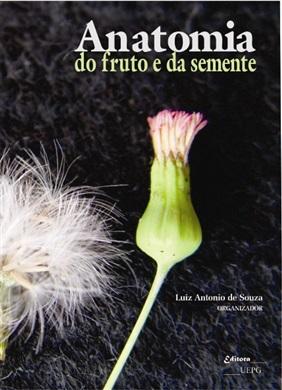ANATOMIA DO FRUTO E DA SEMENTE