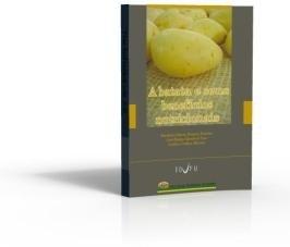 A Batata e seus Benefícios Nutricionais