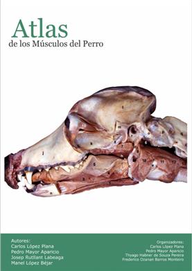 ATLAS DE LOS MÚSCULOS DEL PERRO