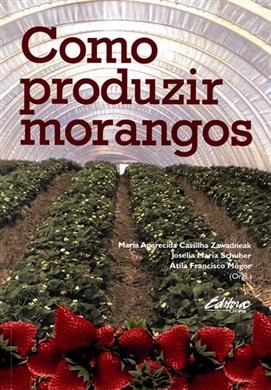 Como produzir morangos