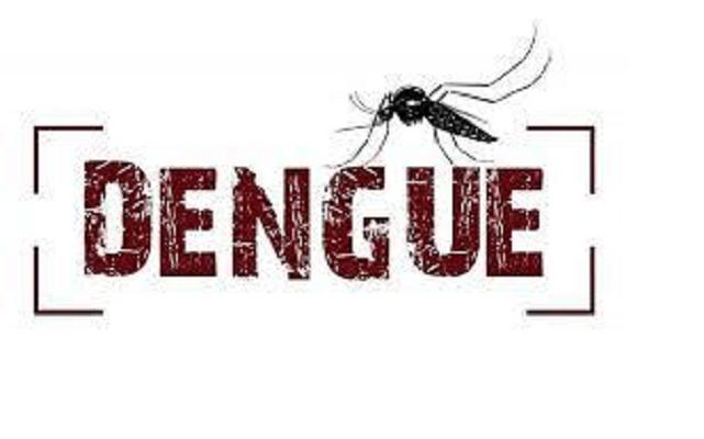 Resultado de imagem para dengue brasilia