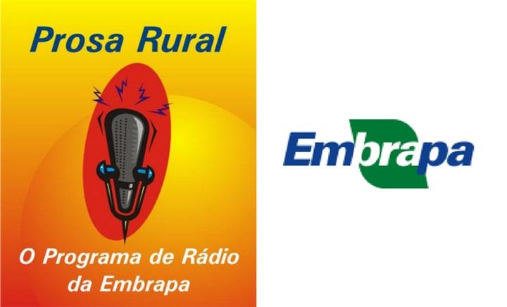 Embrapa lança edital para o programa Prosa Rural