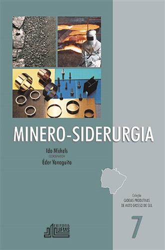 Minero – Siderurgia - Coleção Cadeias Produtivas de Mato Grosso do Sul