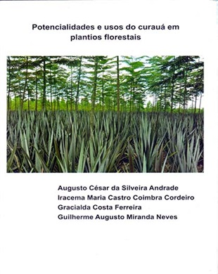 POTENCIALIDADES E USOS DO CURAUÁ EM PLANTIOS FLORESTAIS