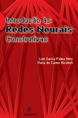 Introdução às redes neurais construtivas