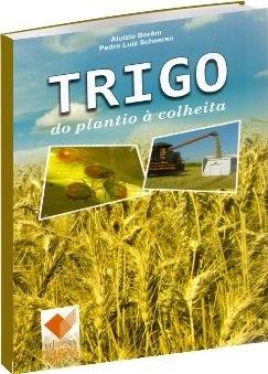 Trigo: do plantio à colheita